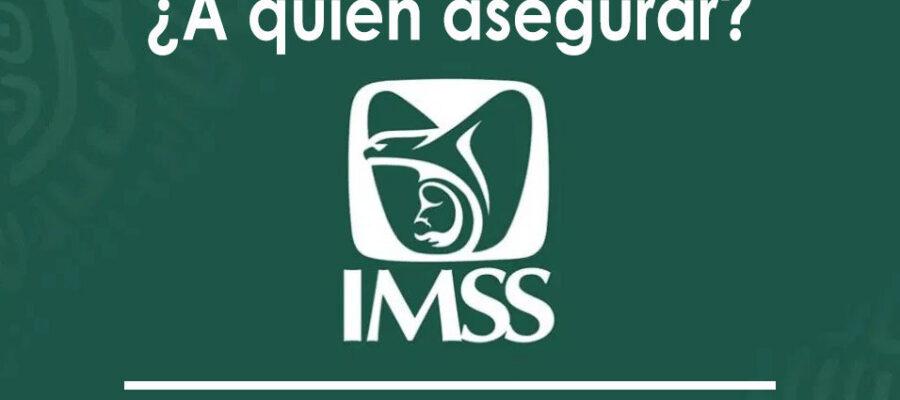 A quienes asegurar en el IMSS